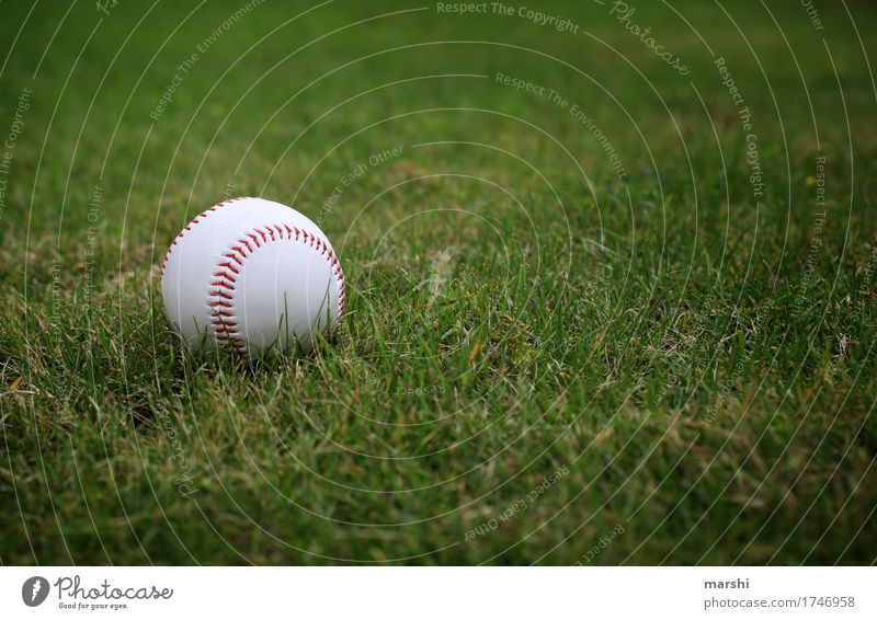Meadow Sports Moody Fitness Sports team Athletic Americas Ball Sports Training Sporting event Ball sports Sporting Complex Baseball