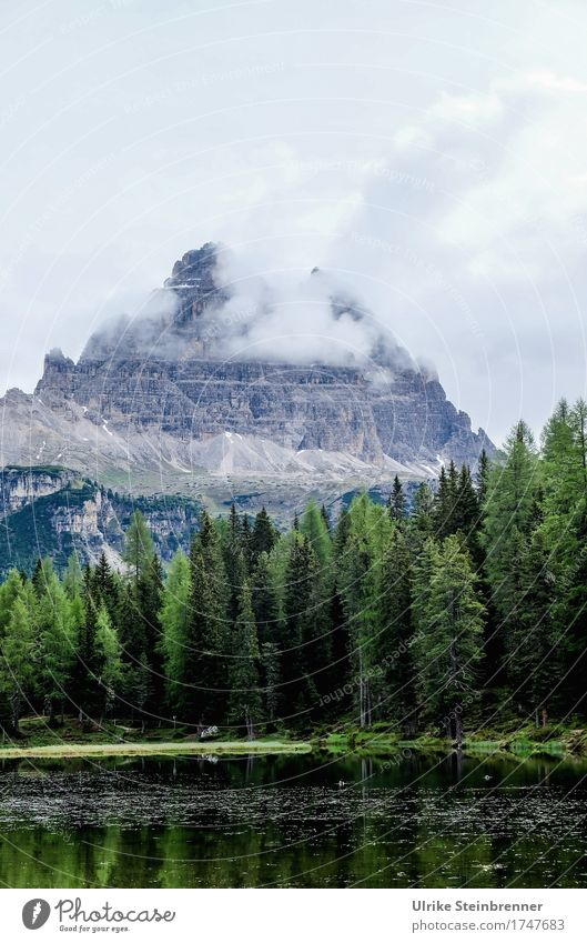 At the Lago d'Antorno Vacation & Travel Tourism Trip Summer Summer vacation Mountain Hiking Nature Landscape Plant Sky Clouds Weather Fog Tree Fir tree Rock