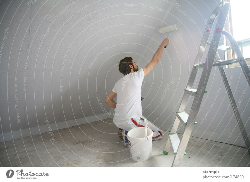 painting works Colour photo Interior shot Copy Space left Day Light Shadow Central perspective Full-length Rear view Forward Work and employment Craftsperson