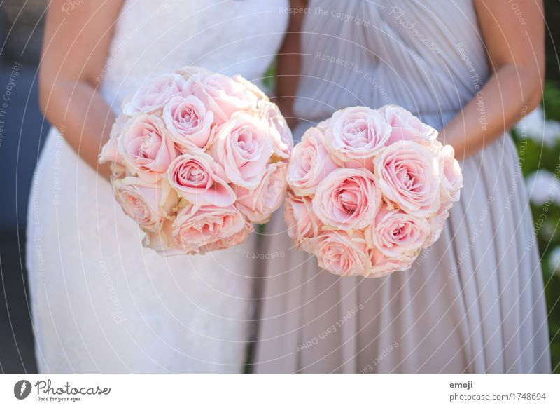 wedding Wedding Feasts & Celebrations Summer Flower Rose Bouquet Kitsch Pink Colour photo Exterior shot Detail Day Shallow depth of field