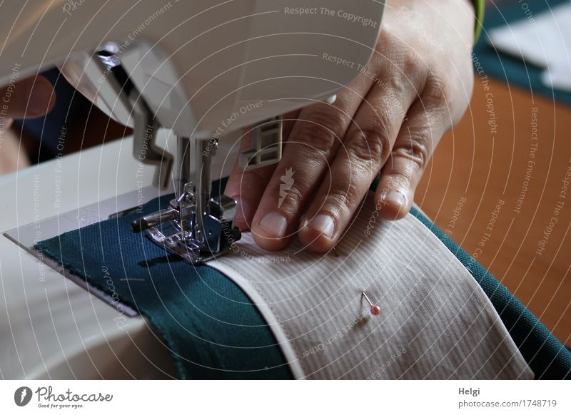 creative sewing lesson Sewing machine Human being Feminine Woman Adults Hand Fingers 1 30 - 45 years Authentic Uniqueness Brown Gray Green White Joy Creativity