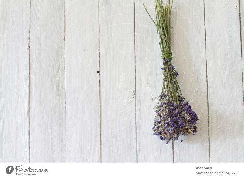 Lavender on wooden board floats Table Flower Blossom Bouquet Violet Fragrance Odor Wooden table Board Comforting Medicinal plant Medication angustifolia vera