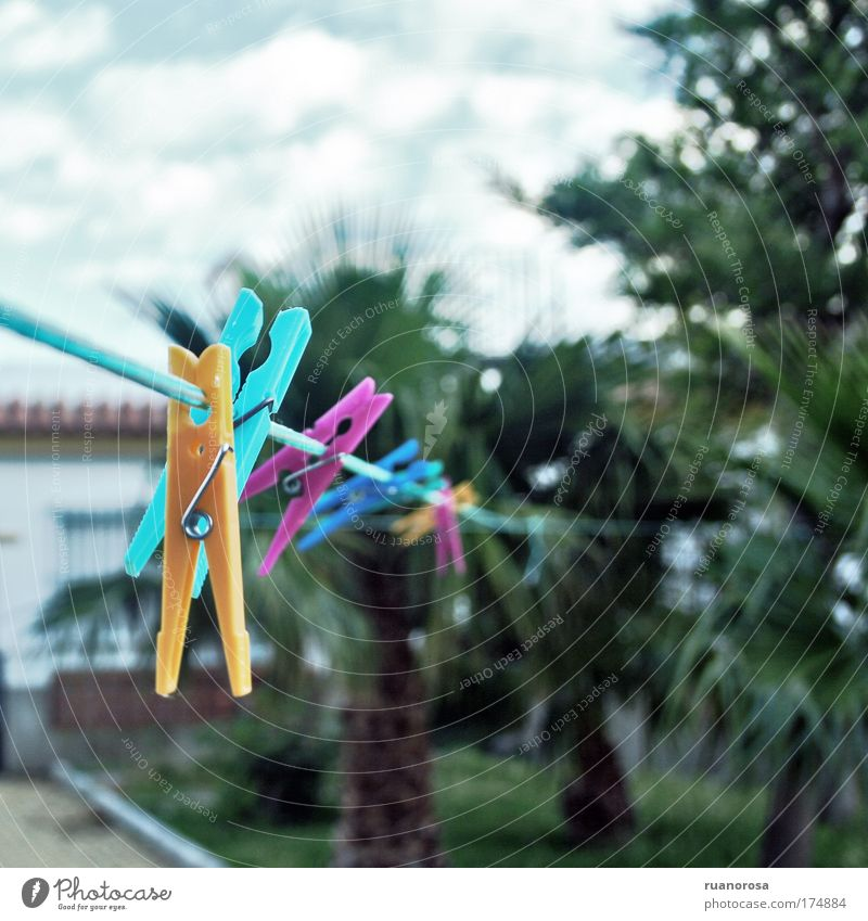 Sky Blue Green Plant Clouds Yellow Air Rope Services Clothes peg Holder Prismatic colors