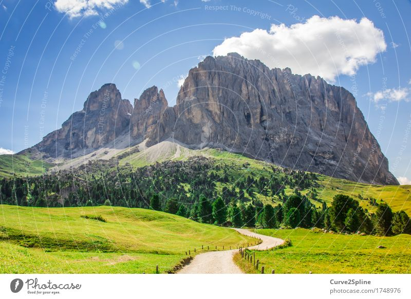 the rock Nature Landscape Elements Sky Clouds Sun Summer Beautiful weather Meadow Field Forest Hill Rock Alps Mountain Peak Hiking South Tyrol Dolomites