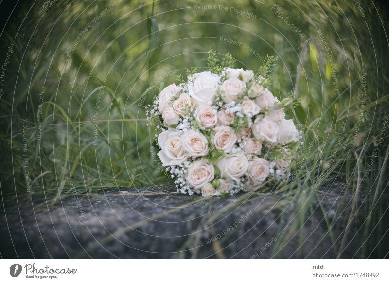 Nature Beautiful Love Meadow Park Wedding Rose Bouquet Bride