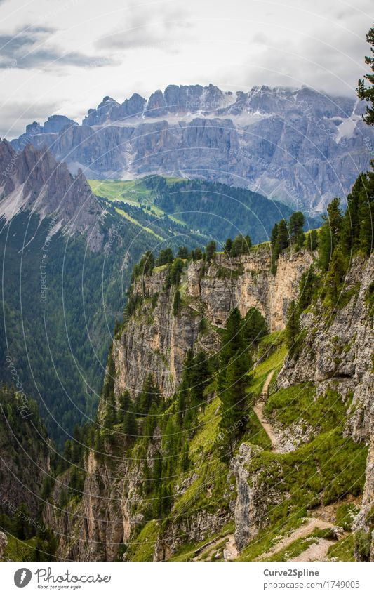 mountain worlds Nature Landscape Elements Sky Clouds Summer Tree Meadow Field Forest Hill Rock Alps Mountain Peak Firm Blue Green South Tyrol Dolomites Massive