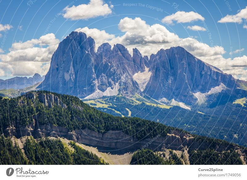 South Tyrol Nature Landscape Elements Sky Clouds Storm clouds Summer Meadow Field Forest Hill Rock Alps Mountain Peak Firm Dolomites Freedom Eternity Green Blue