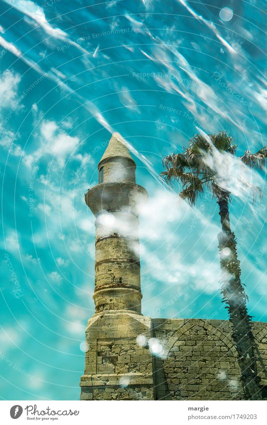 Ancient mosque with palm tree and blue sky with clouds Leisure and hobbies Vacation & Travel Tourism Trip Adventure Far-off places Sightseeing City trip Summer