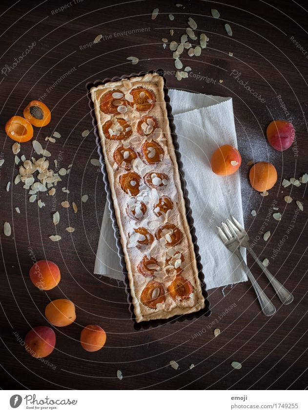 Apricot tart with almond cream Fruit Cake Dessert Candy Nutrition Slow food Delicious Sweet Orange Colour photo Interior shot Deserted Neutral Background Day