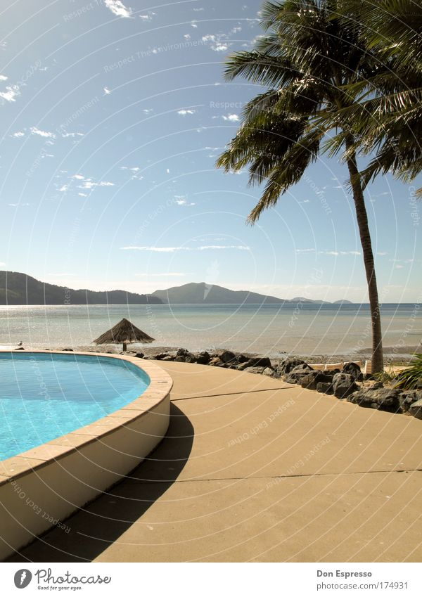 Sky Ocean Summer Beach Vacation & Travel Relaxation Mountain Contentment Coast Australia Island Swimming pool Sunshade Palm tree Beautiful weather