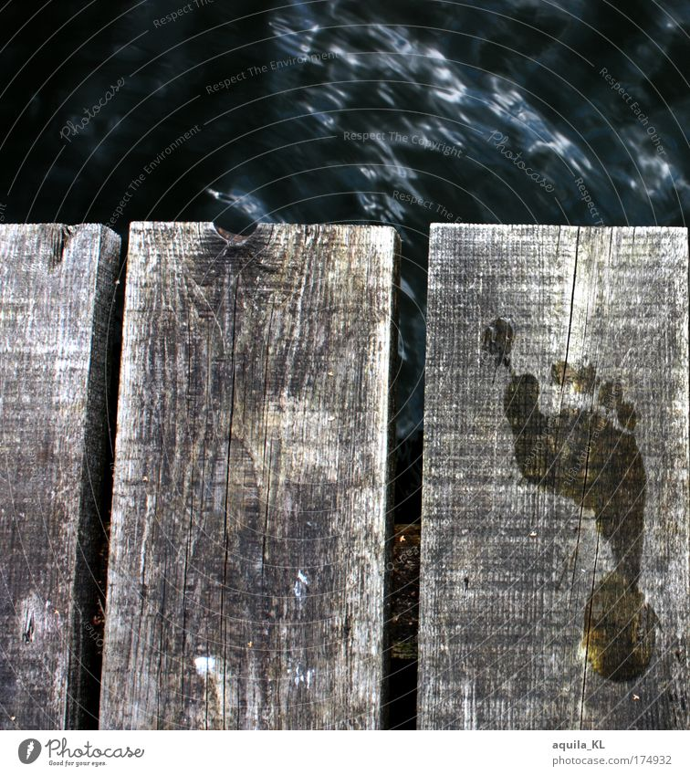 a small step Colour photo Exterior shot Deserted Day Feet Hot Imprint Wooden board Water Footbridge