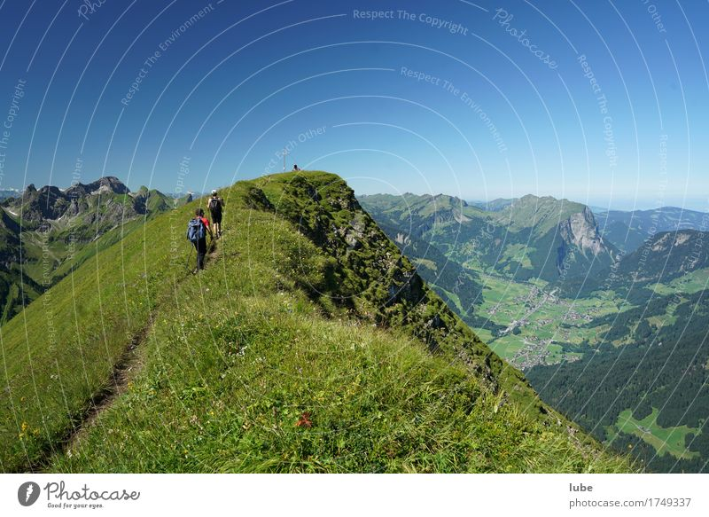 tightrope walk Hiking Environment Nature Landscape Cloudless sky Summer Beautiful weather Rock Alps Mountain Peak Lanes & trails Success Forest of Bregenz
