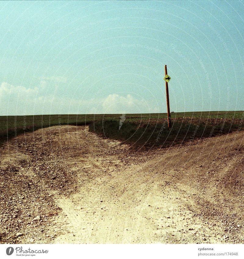 Nature Sky Summer Life Grass Movement Freedom Dream Sadness Lanes & trails Landscape Field Environment Horizon Beginning Transport