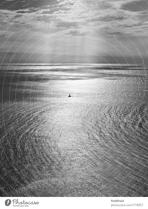 sealoner Black & white photo Exterior shot Copy Space top Copy Space bottom Day Light Shadow Contrast Silhouette Light (Natural Phenomenon) Sunlight Sunbeam