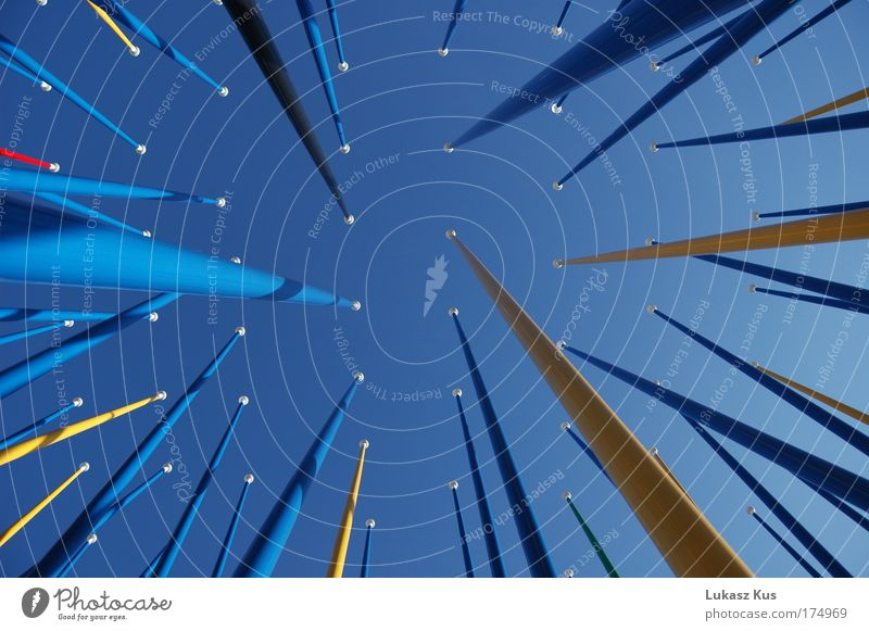 Sky Blue Colour Freedom Tall Perspective Esthetic Uniqueness Infinity Innovative