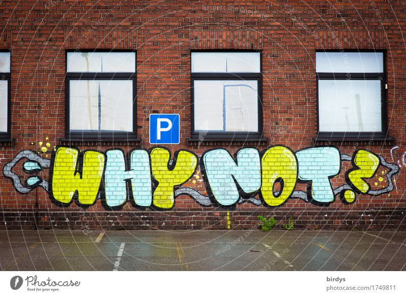 why? House (Residential Structure) Parking lot Facade Window Brick facade Characters Signs and labeling Graffiti Touch Esthetic Brash Free Positive Rebellious