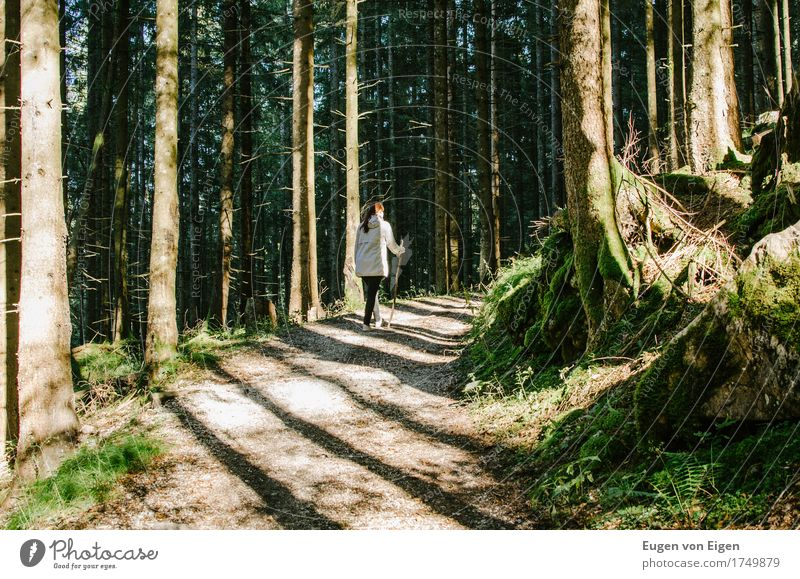 Human being Youth (Young adults) Green Loneliness Forest 18 - 30 years Mountain Adults Environment Life Lanes & trails Feminine Healthy Happy Brown Fresh