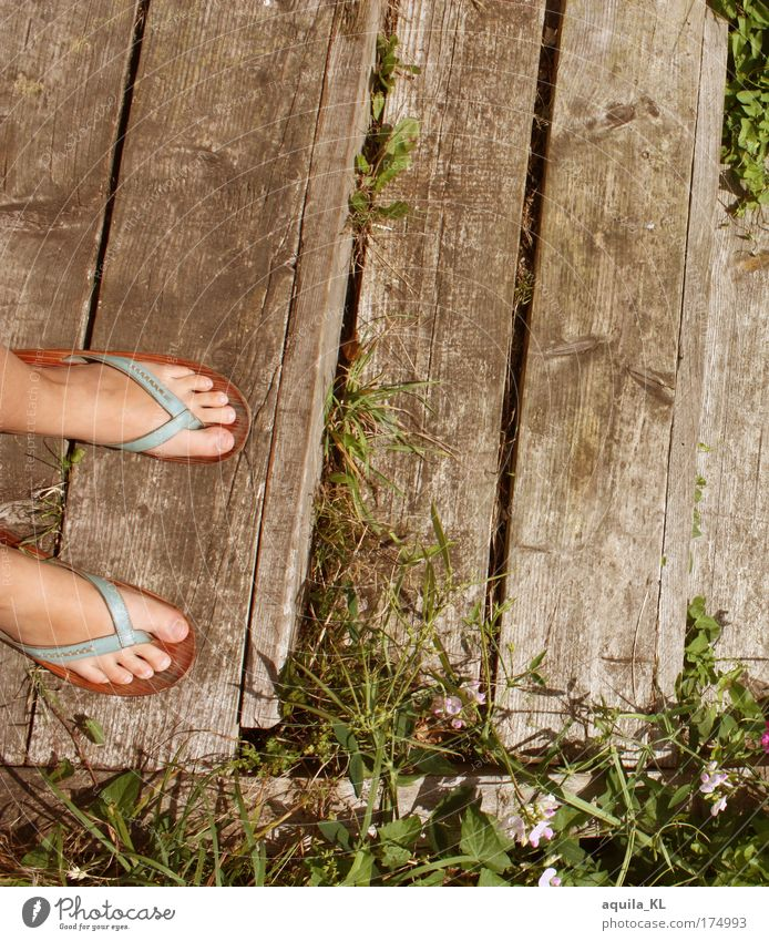 let the sunshine in your ... Colour photo Exterior shot Copy Space top Flip-flops Stand Toes Footbridge Stairs Wooden board Shukkei-en garden Footwear Weed