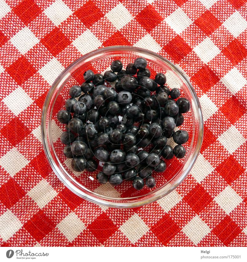 Blueberries in a glass bowl on a red and white chequered tablecloth Colour photo Multicoloured Exterior shot Deserted Copy Space left Copy Space right