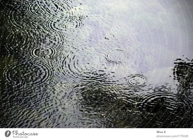 Rain in summer Exterior shot Detail Structures and shapes Deserted Day Light Shadow Reflection Trip Water Climate Climate change Bad weather Waves Lake River