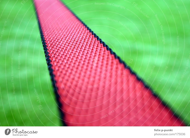Green Red Black Meadow Movement Grass Lifestyle Going Jump Park Leisure and hobbies Earth Dance Walking Rope To fall