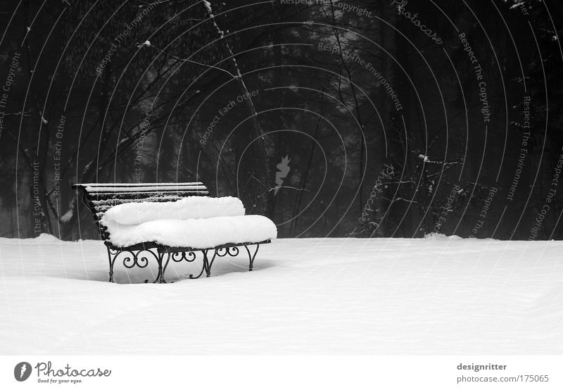 Winter Calm Cold Snow Style Park Design Elegant Weather Climate Peaceful Park bench Winter mood Snow layer To hibernate