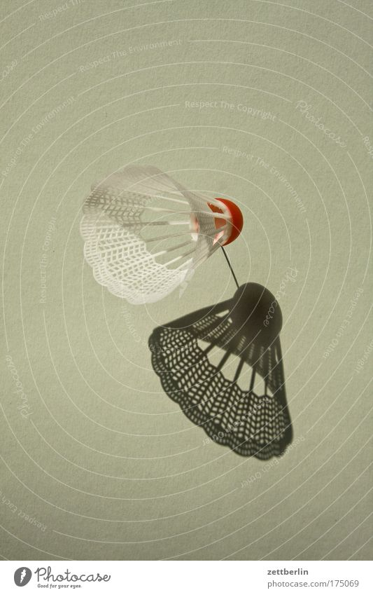 Sun Sports Playing Leisure and hobbies Action Living or residing Feather Ball Things Object photography Badminton