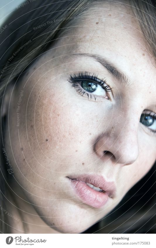 spotted Colour photo Subdued colour Interior shot Portrait photograph Looking into the camera Skin Mascara Rouge Feminine Head Face Eyes Nose Mouth Lips 1