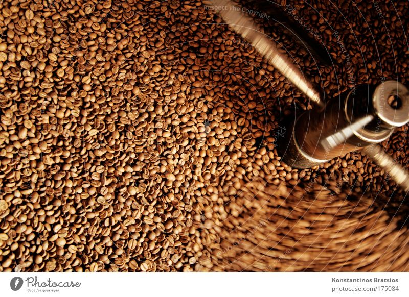 fresh coffee scent Colour photo Exterior shot Deserted Day Shadow Motion blur Food To have a coffee Organic produce Hot drink Coffee Espresso Coffee roaster