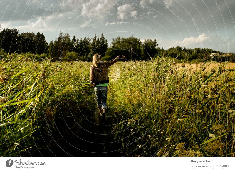Woman Human being Nature Youth (Young adults) Sky Summer Vacation & Travel Clouds Far-off places Grass Freedom Hiking Wind Trip To go for a walk