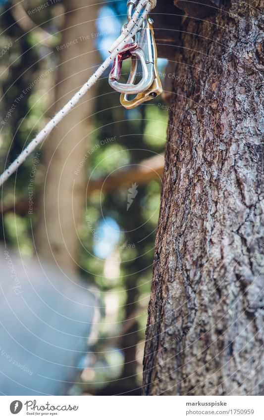 Climbing park Karabiner Lifestyle Leisure and hobbies Playing Children's game Climbing wall climbing park high-ropes garden Trip Adventure Sports Fitness