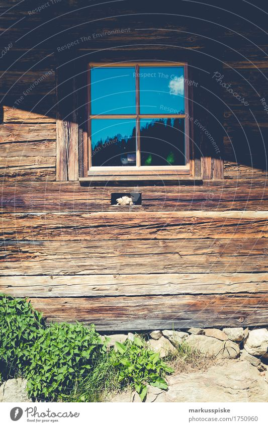 wood windows mountain hut Lifestyle Joy Happy Harmonious Well-being Contentment Leisure and hobbies Vacation & Travel Tourism Trip Adventure Far-off places