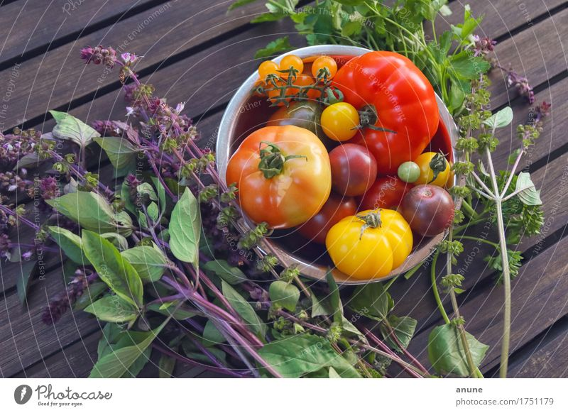 All kinds of tomatoes with fresh herbs Food Vegetable Lettuce Salad Herbs and spices Nutrition Organic produce Vegetarian diet Diet Slow food Italian Food Bowl