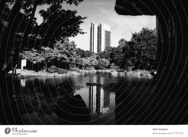 White Tree Calm House (Residential Structure) Black Garden Park Architecture Island Analog Beautiful weather Pond City Black & white photo
