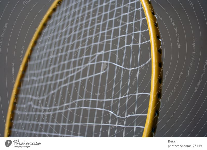 bad minton Colour photo Interior shot Close-up Detail Deserted Copy Space left Copy Space right Neutral Background Leisure and hobbies Playing Children's game