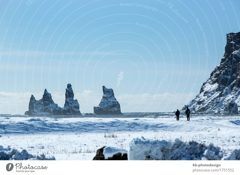 Vacation & Travel Far-off places Winter Mountain Coast Tourism Adventure Iceland Sightseeing Winter vacation Lava Pinnacles Vik