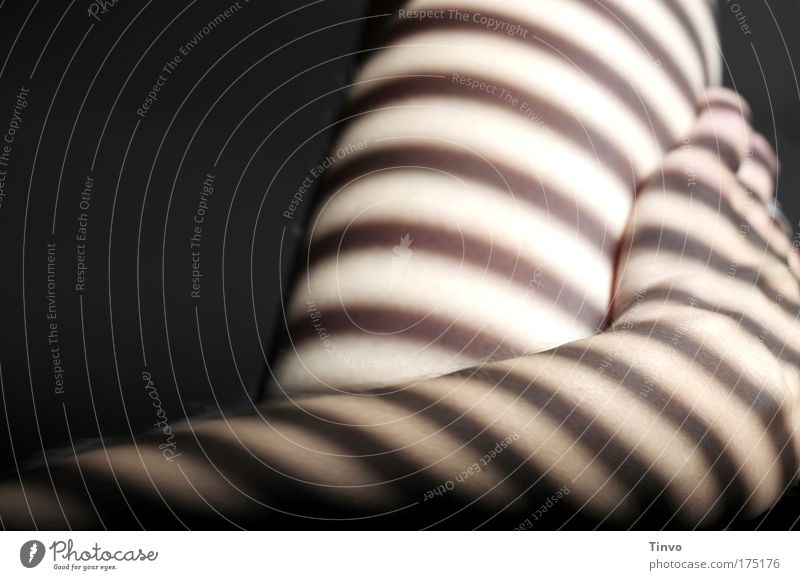 Hand Beautiful Relaxation Feminine Emotions Legs Contentment Arm Skin Lie Touch To enjoy Lust Exotic Striped Nude photography