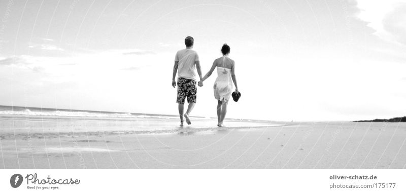 Beach walk Panorama Black & white photo Exterior shot Evening Sunlight Rear view Human being Couple Partner 2 Sky Sunrise Sunset Summer Beautiful weather