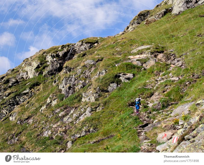 Up Sports Climbing Mountaineering Hiking Human being Feminine Young woman Youth (Young adults) Woman Adults 1 18 - 30 years Nature Landscape Sky Summer