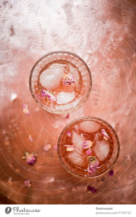 rose iced tea Food Beverage Cold drink Lemonade Tea Glass Fresh Orange Refreshment Copper Rose leaves Iced tea Ice cube Tray Colour photo Subdued colour