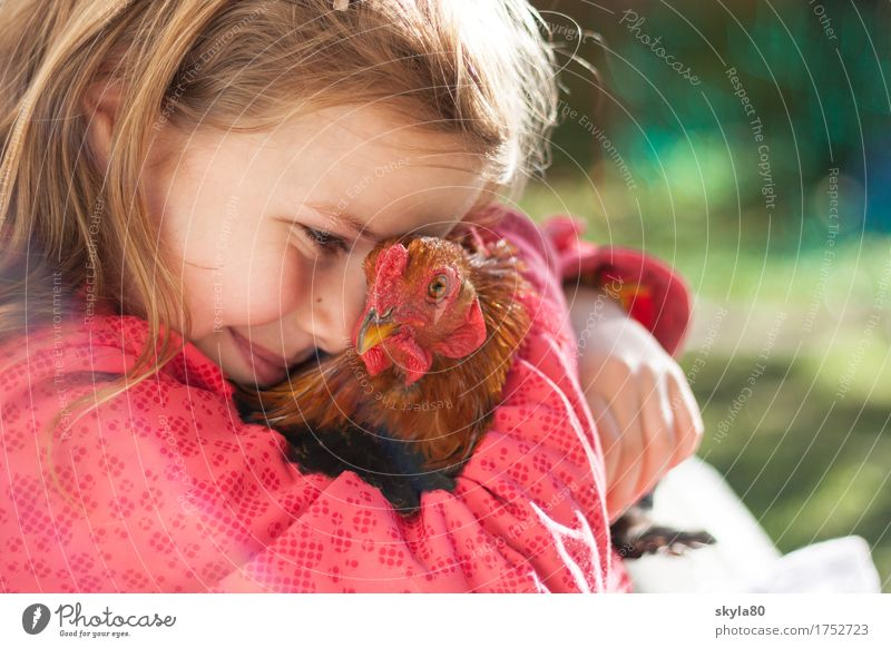 Child Joy Girl Warmth Love Exceptional Hair and hairstyles Bird Infancy Feather Warm-heartedness Childhood memory Safety To hold on Kissing Pet