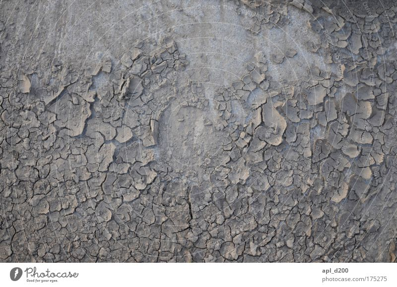Not wet Colour photo Subdued colour Exterior shot Deserted Neutral Background Evening Twilight Summer Sun Environment Earth Field To dry up Esthetic Dirty Gray