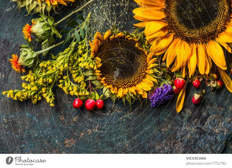 Sunflowers in autumn Bouquet of flowers Style Design Life Summer Decoration Nature Plant Autumn Flower Leaf Blossom Yellow Composing Florist Holiday season