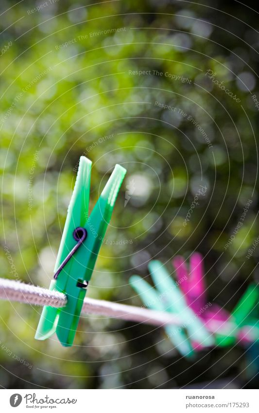 Colour photo Detail Deserted Day Shallow depth of field Plastic Green Clothes peg Pair of pliers Clothesline Rope Sunlight Summer