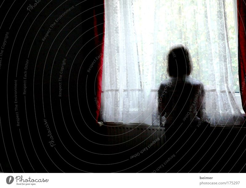 sorrow Subdued colour Interior shot Copy Space left Day Contrast Silhouette Blur Upper body Rear view Forward Human being Feminine Back 1 Think Looking Dream