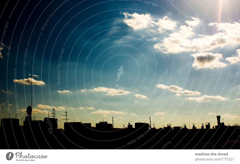 Sky over Berlin Colour photo Exterior shot Deserted Day Twilight Light Shadow Contrast Silhouette Reflection Light (Natural Phenomenon) Sunlight Sunbeam Sunrise