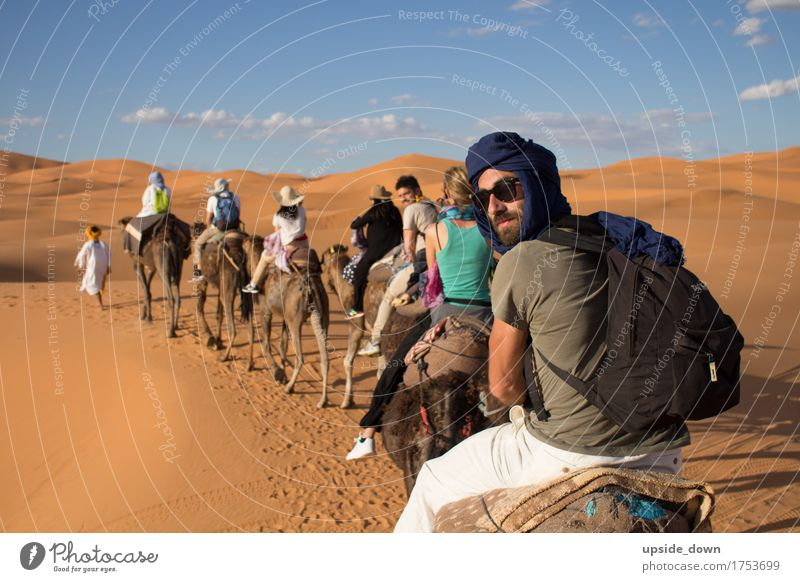 Vacation & Travel Youth (Young adults) Summer Sun Joy Far-off places 18 - 30 years Adults Yellow Group Tourism Sand Masculine Trip Group of animals Adventure
