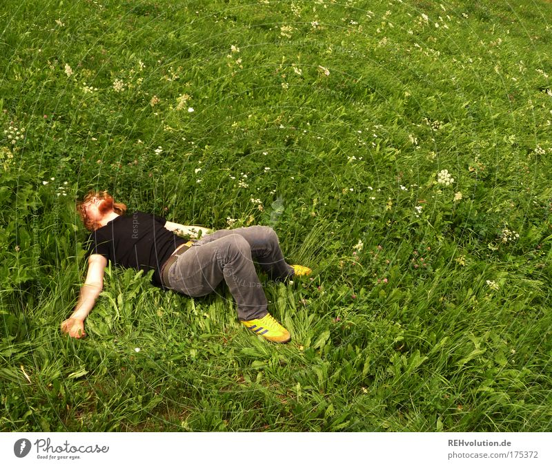 Young man lies in a meadow Colour photo Exterior shot Copy Space right Copy Space top Day Sunlight Full-length Joy Happy Human being Masculine