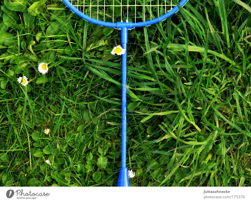 Too hot to play Playing badminton rackets Net Grass Meadow Badminton Lie Forget Invalided out reject Infancy Joy Movement Juttas snail