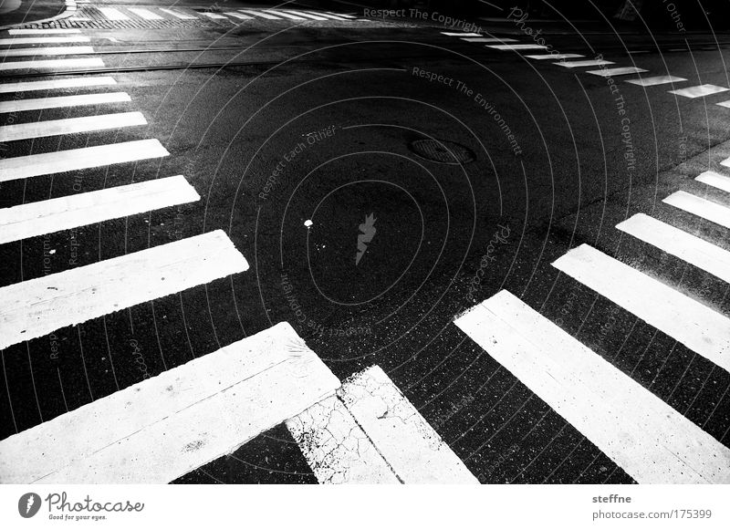 City Calm Transport Arrangement Asphalt Traffic infrastructure Motoring Pedestrian Crossroads Black & white photo Zebra crossing Pedestrian crossing